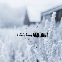 I Don't Know Anything